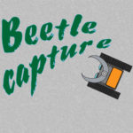 Beetle capture