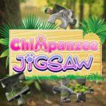Chimpanzee Jigsaw