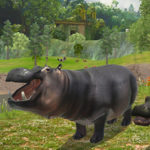 HIPPO Hunting Sniper Shooter