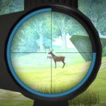 Hunter Training