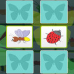 Kids Memory with Insects