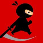 Mr Ninja Fighter