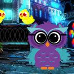 Ruler Owl Escape Game