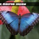 Blue Morpho Butterfly Jigsaw