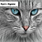 Cat Eye's Jigsaw