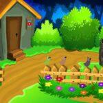 Colourful Garden Escape