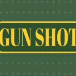 Gun Shoot HD