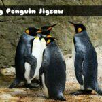 King Penguin Jigsaw