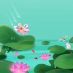 Lotus Flowers Slide