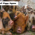Piglet Piggy Jigsaw