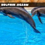 Sea Dolphin Jigsaw