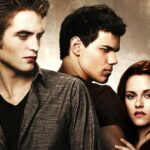 Twilight Jigsaw Puzzle Collection