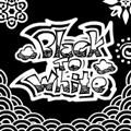 Black to White